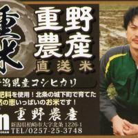 shigeno1